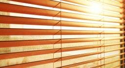Какие жалюзи лучше защищают от солнца?